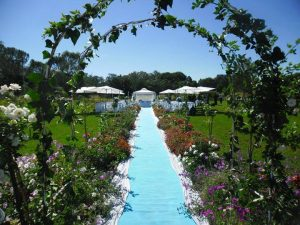 Bella Rosa - wedding venue Wedding Expos Africa Blog